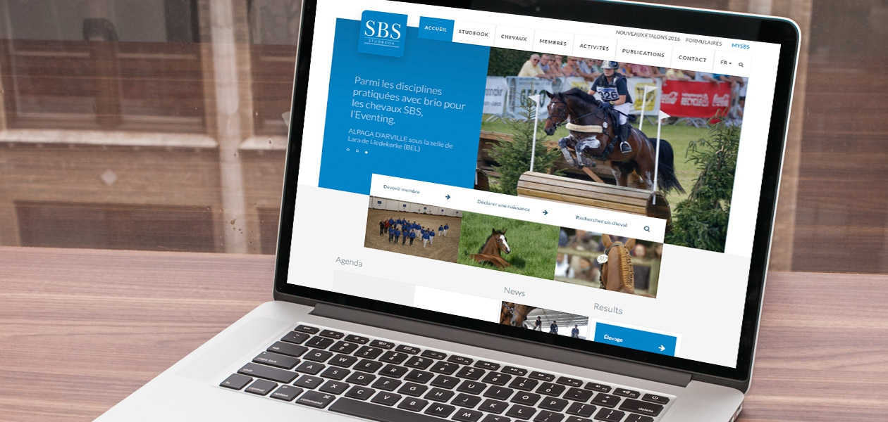Les meilleurs chevaux belges online