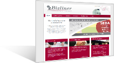Bizliner - Active collaboration creates value for your business