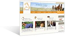Sellerie-online.fr - équipement pour le cheval et le cavalier
