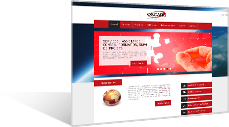 OSCARS - premier partenaire Oracle spatial