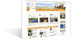 Sellerie-online - Equipement du cheval et du cavalier